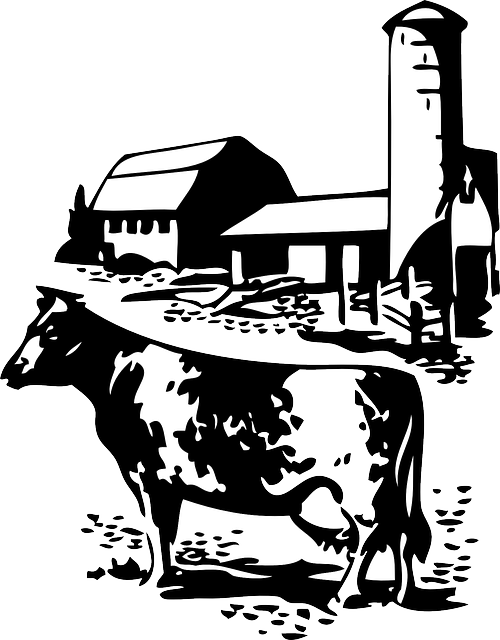 Silhouette farm cow dairy. Clipart barn pen