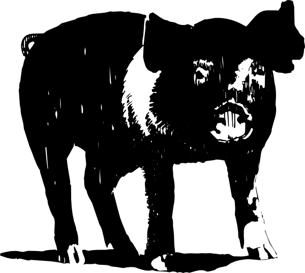 Clip art at clker. Clipart pig black and white