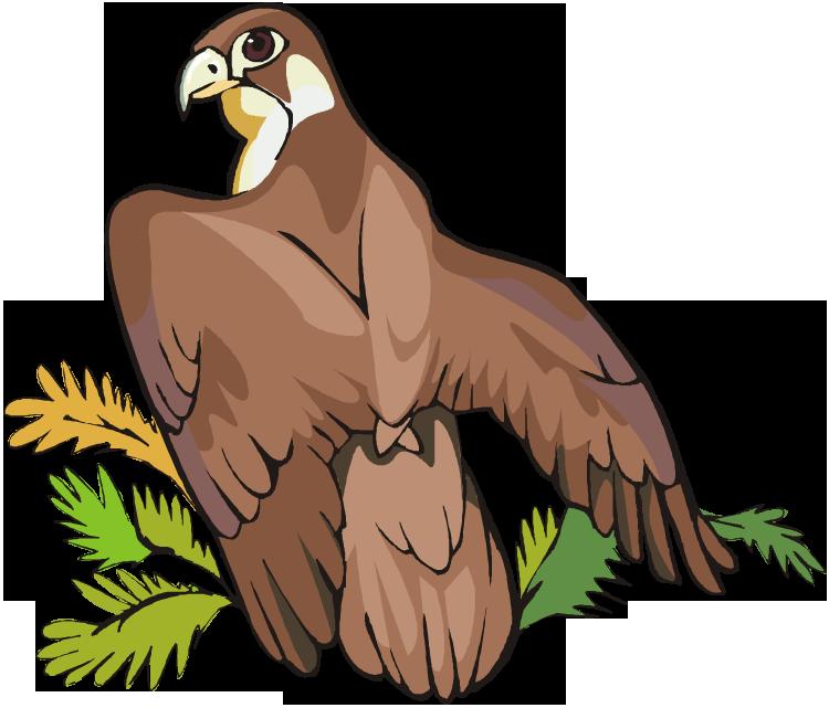 Eagle clipart easy. Free