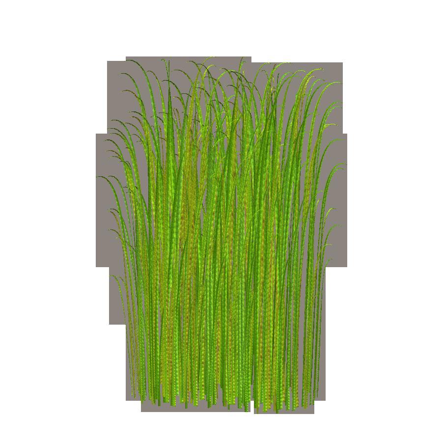 Hi clipart transparent background. Png grass image free