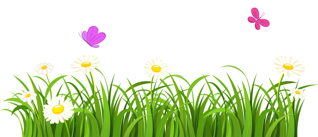Clipart easter grass. White clover flower grasses