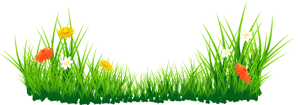 Grass with daffodils png. Youtube clipart cricket