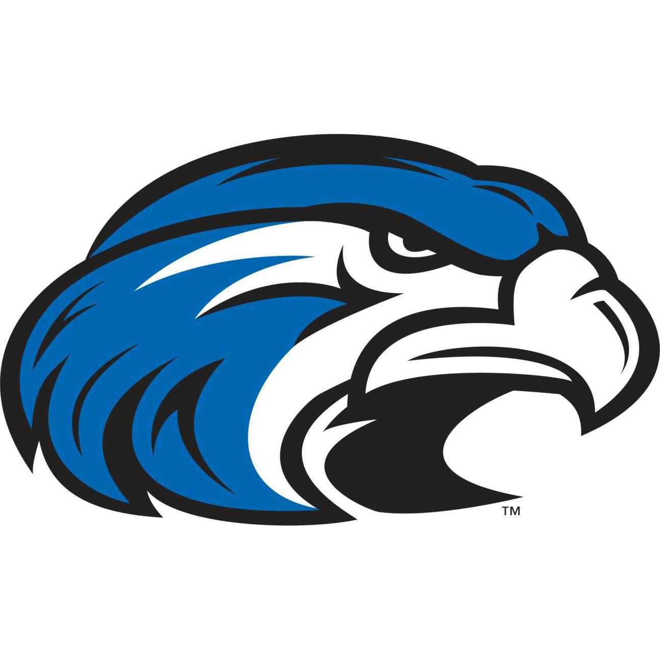 Hawk shorter university