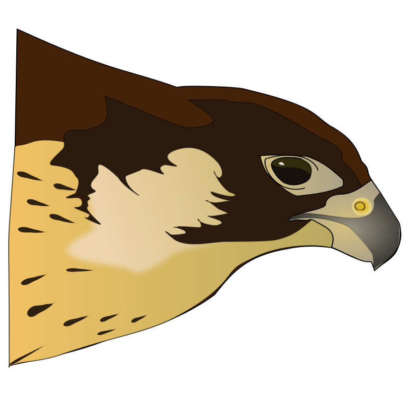 Muscle clipart falcon. Hawk free panda images