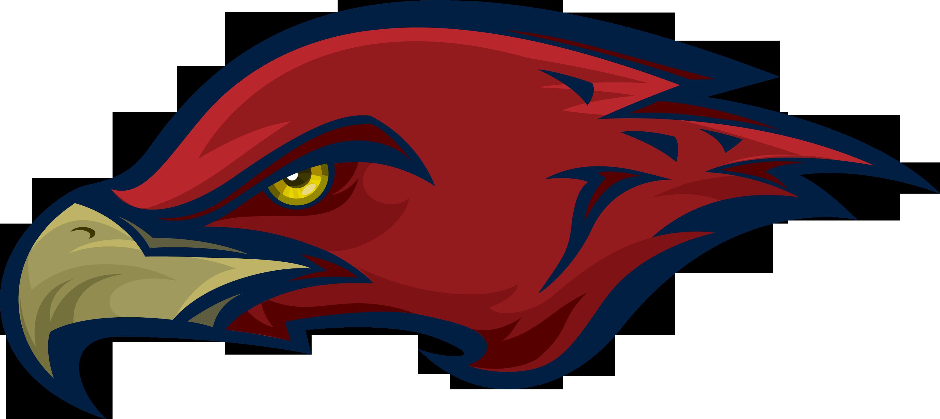 Hawk clipart hawk head. School district mill creek