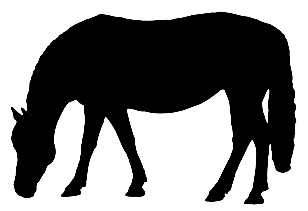 Warrior clipart soldier rome. Dressage horse silhouette at
