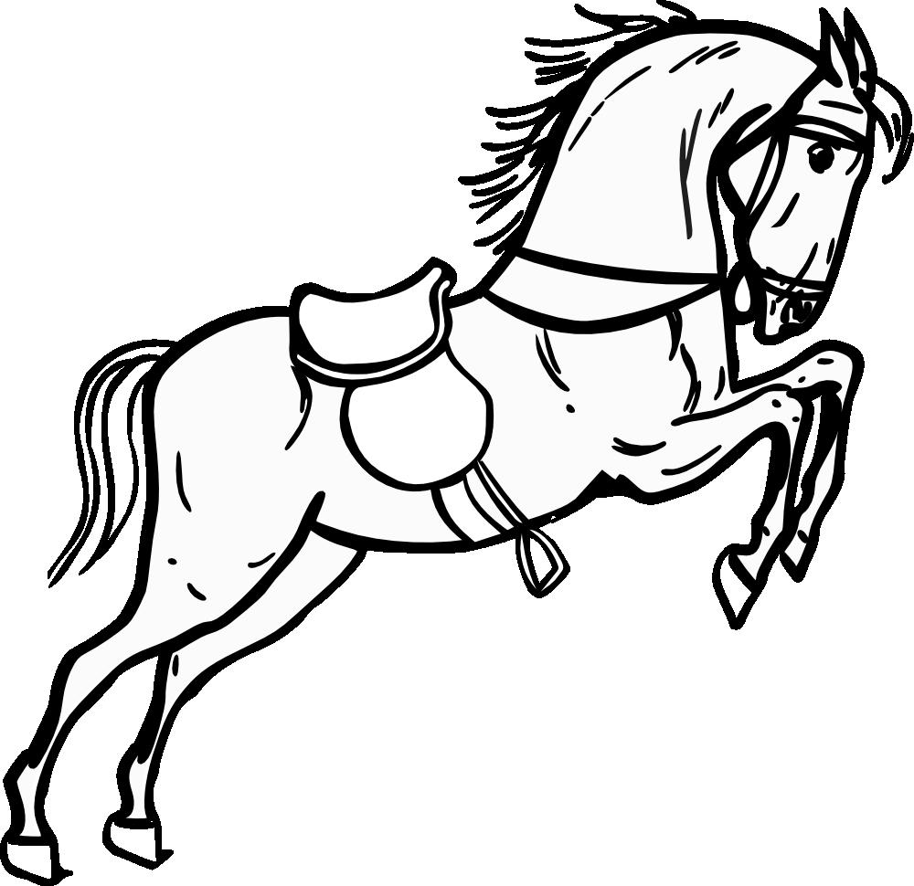 Horse jumping panda free. Horses clipart equestrian