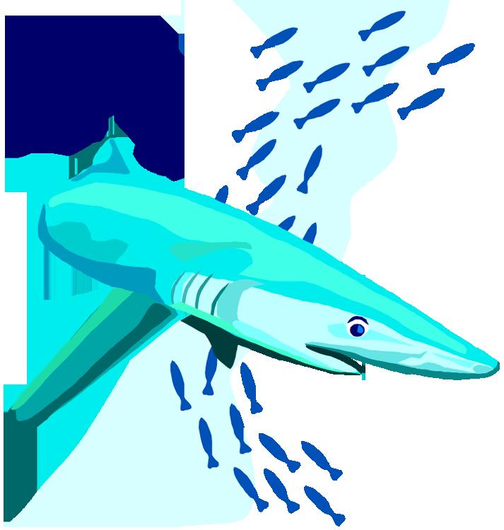 Clipart shark shark swimming. Free