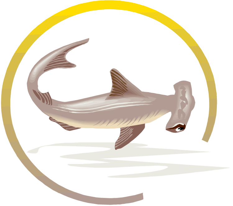 Free. Clipart shark zebra shark