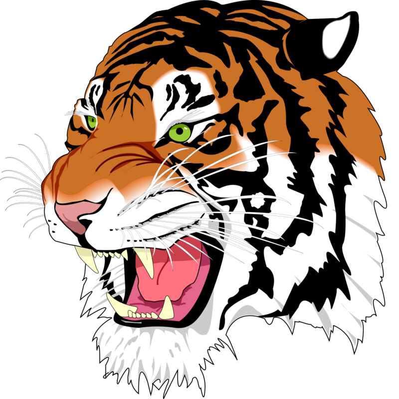 Face clipart tiger. Free images photos black