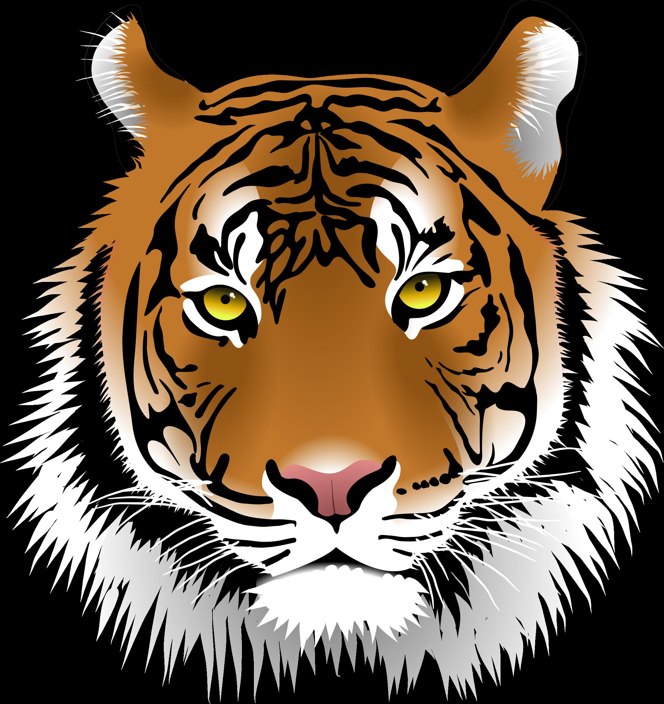 Track clipart tiger. Png face transparent images