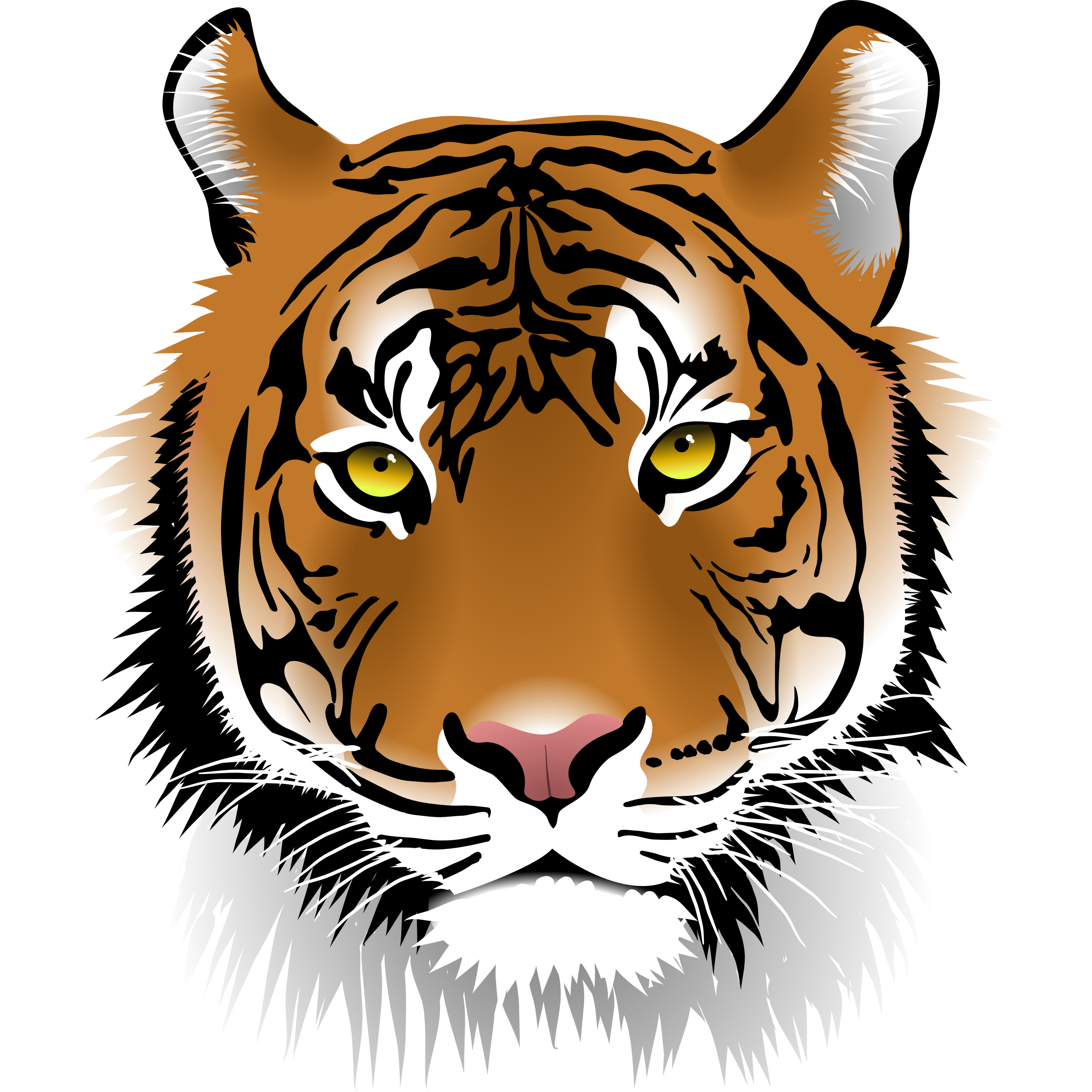 Muscles clipart tiger.  collection of halloween