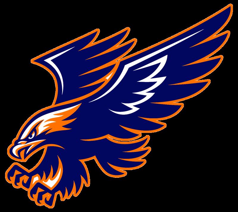 Image result for hawk. Eagle clipart basketball