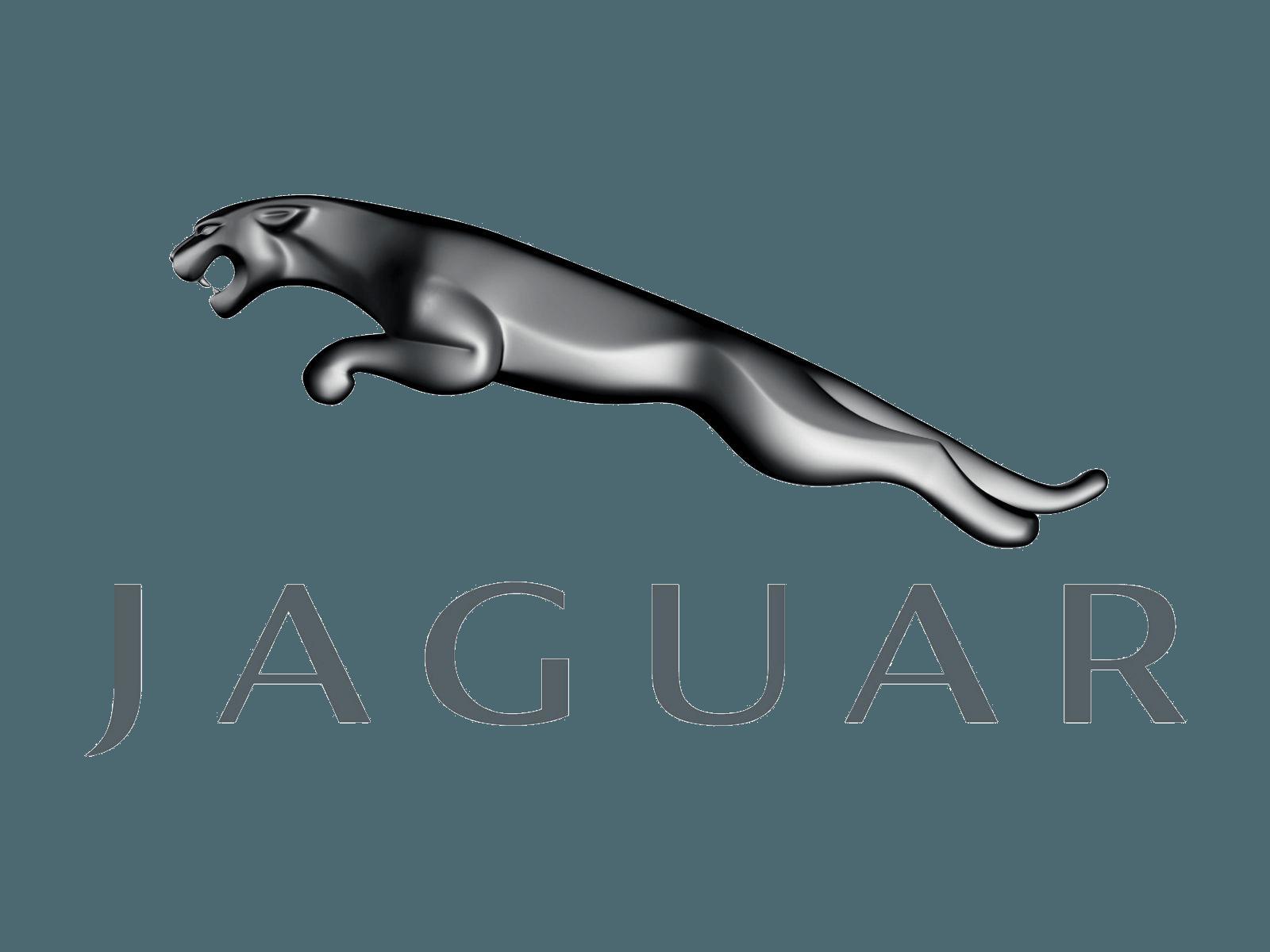 Clipart basketball jaguar. Download car logo png