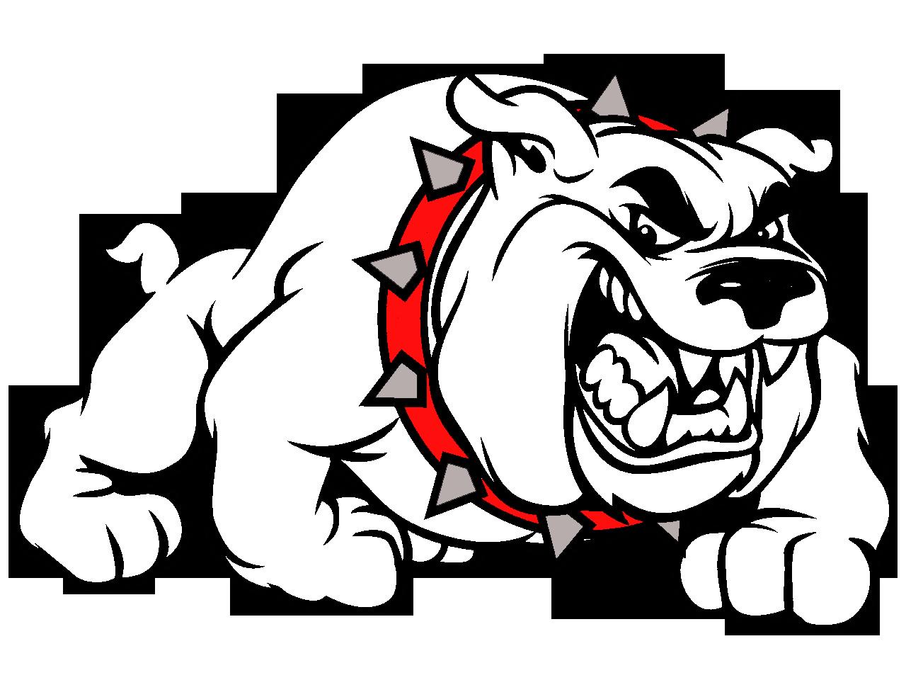 Bulldog vector art cliparts. Head clipart pitbull