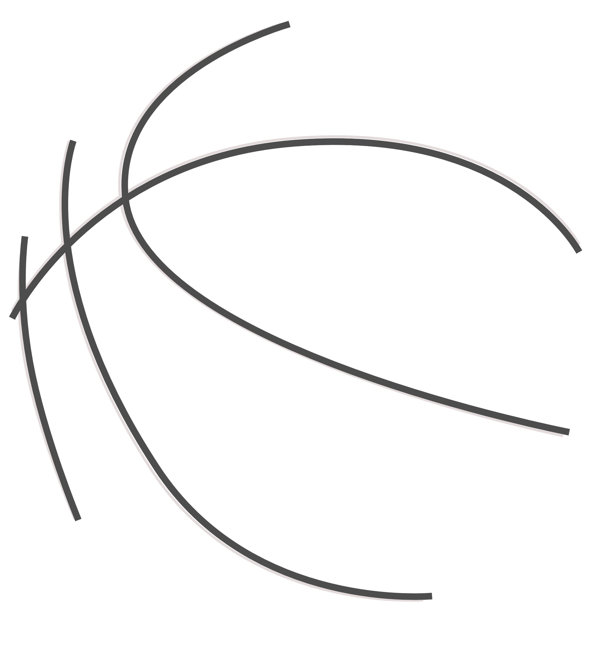 Black and white panda. Clipart shield basketball