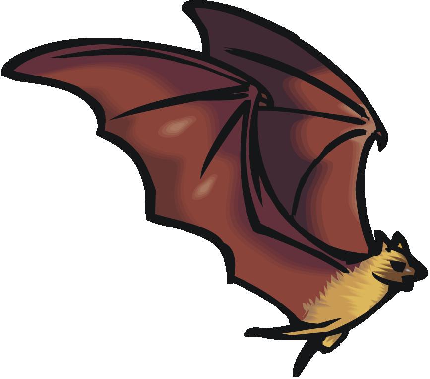 Bats teachers science trek. Geology clipart teaching