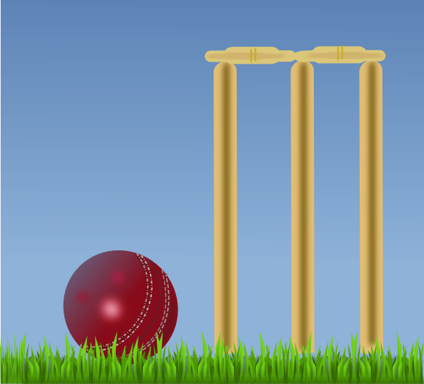 Cricket cricket pitch
