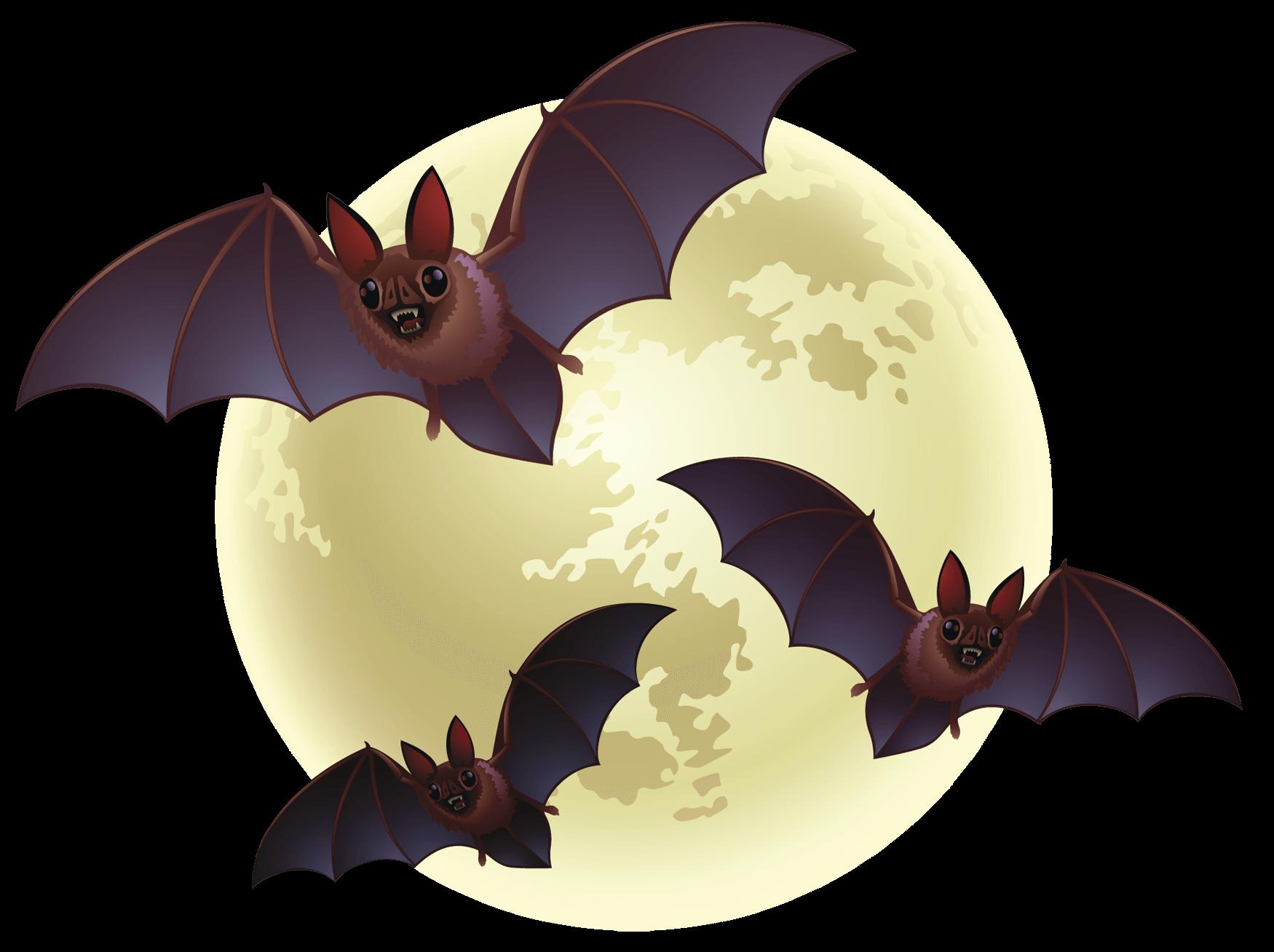 Clipart halloween transparent background. Creepy bats png stickpng