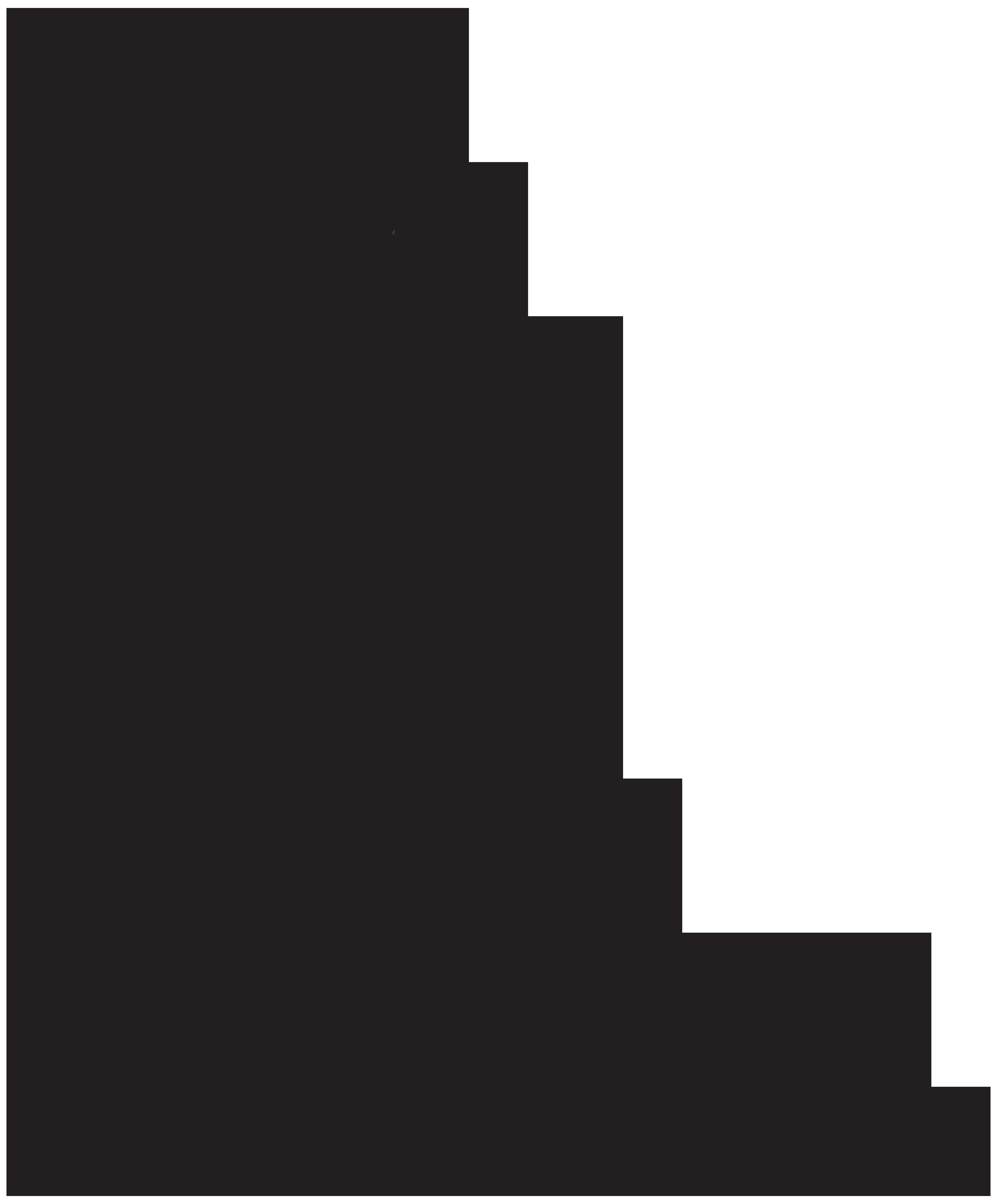 Groom and bride png. Dress clipart flower girl dress