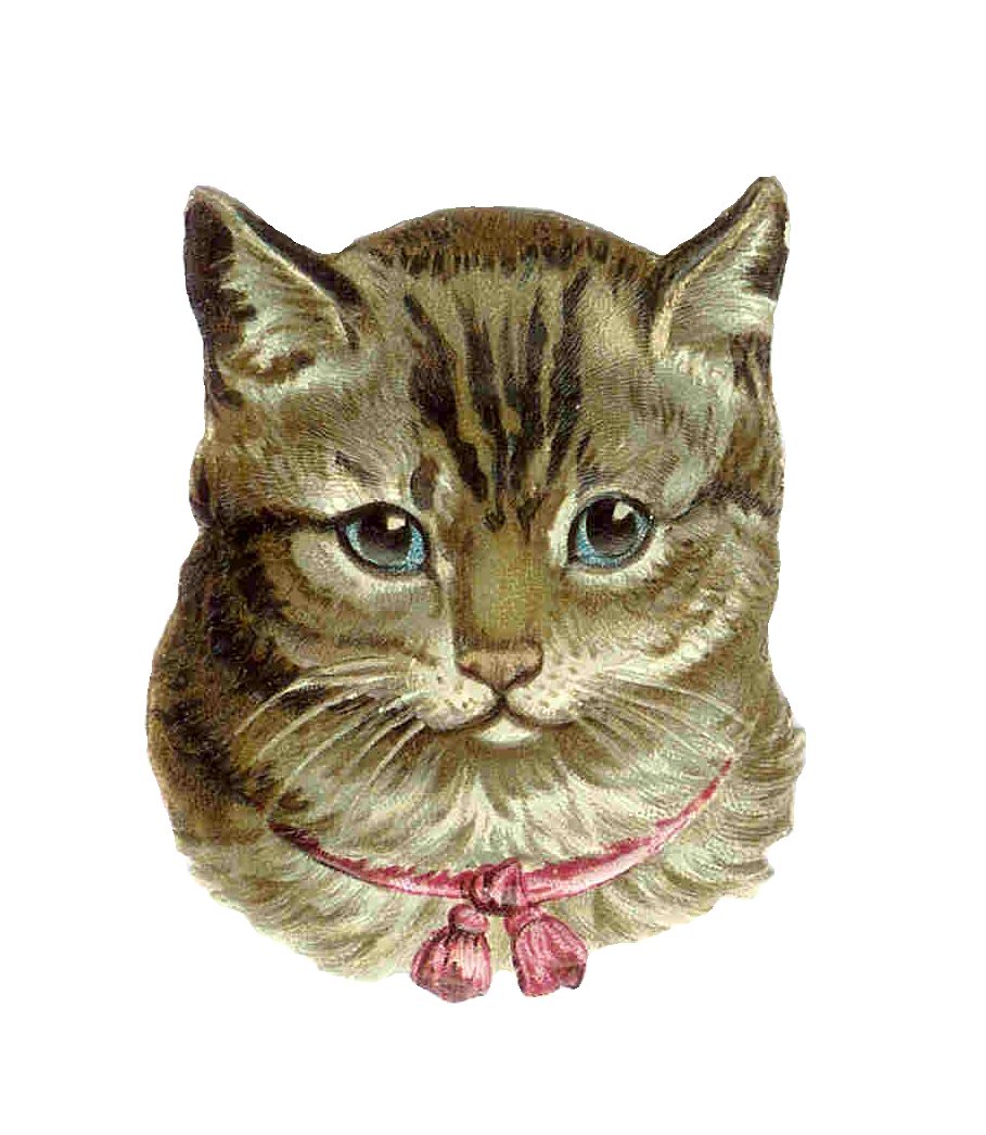 Nest clipart mother baby cat. Grey from antique images