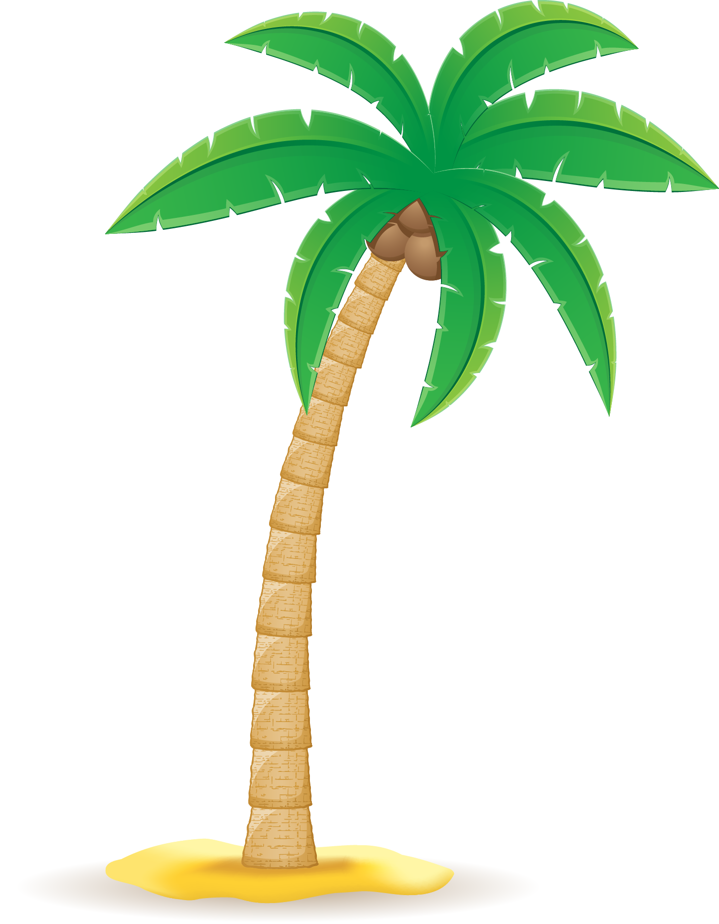 Arecaceae clip art transprent. Clipart leaf coconut tree