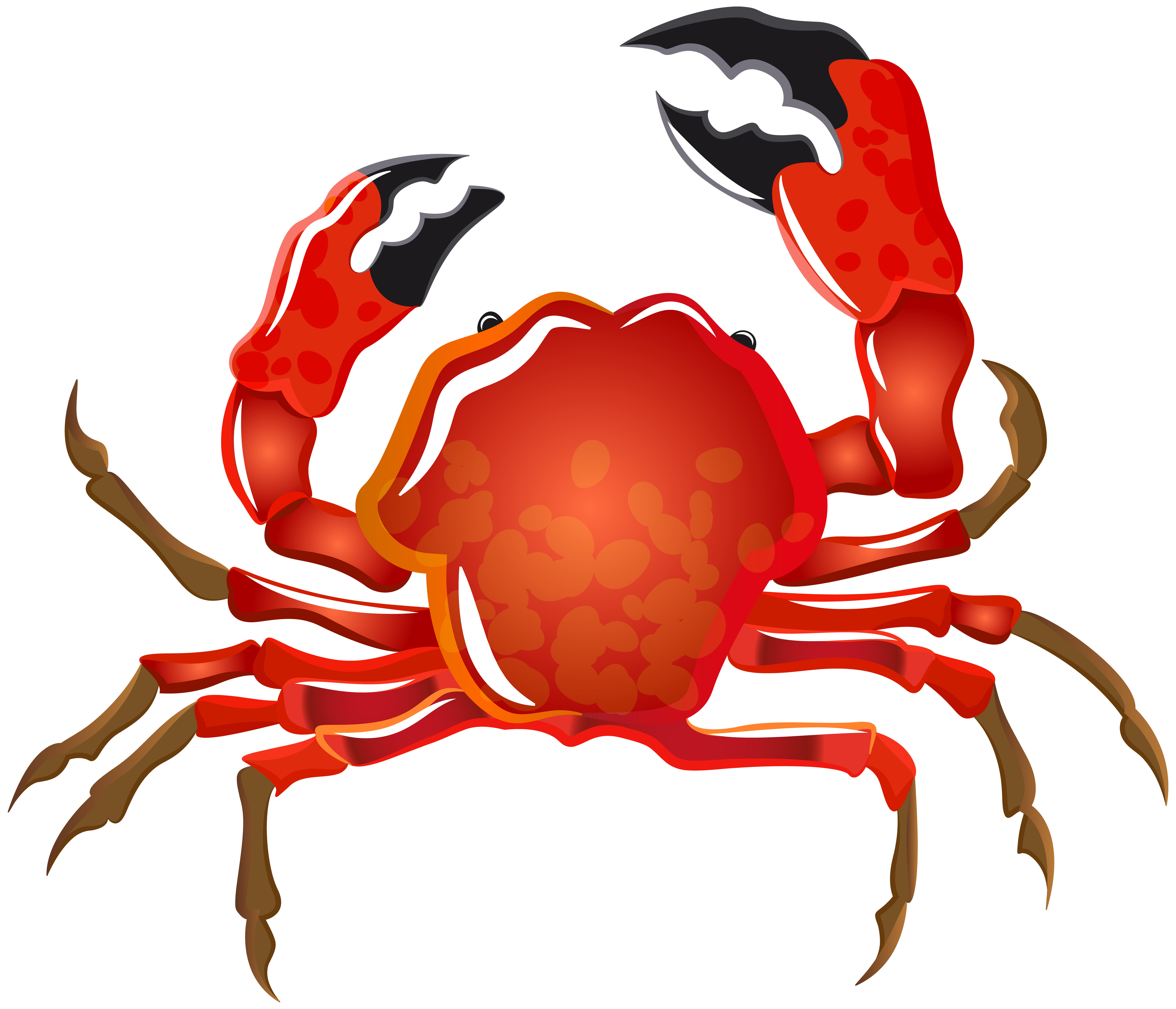 Transparent png image gallery. Crab clipart crab stick
