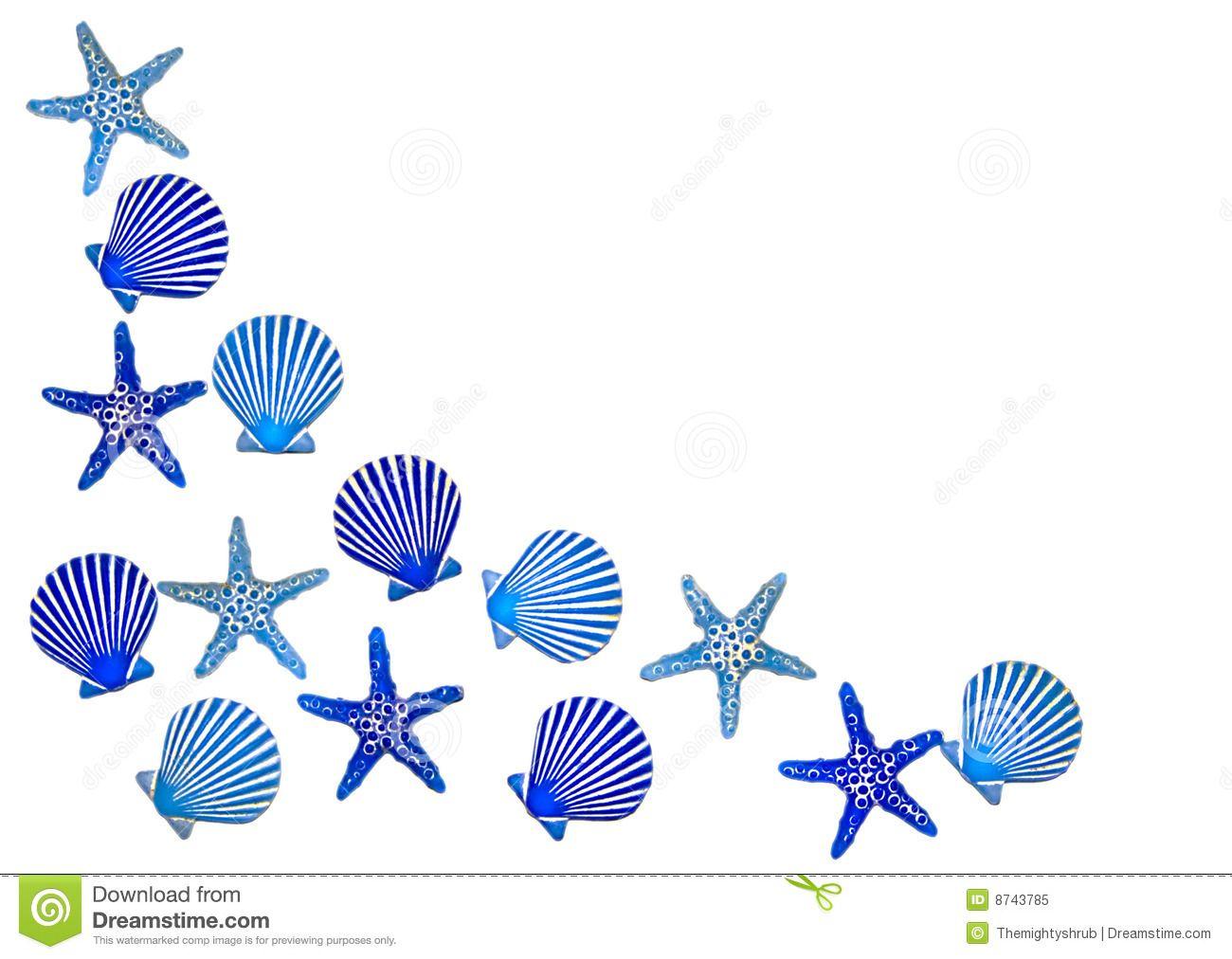 Starfish clip art divider. Shell clipart border