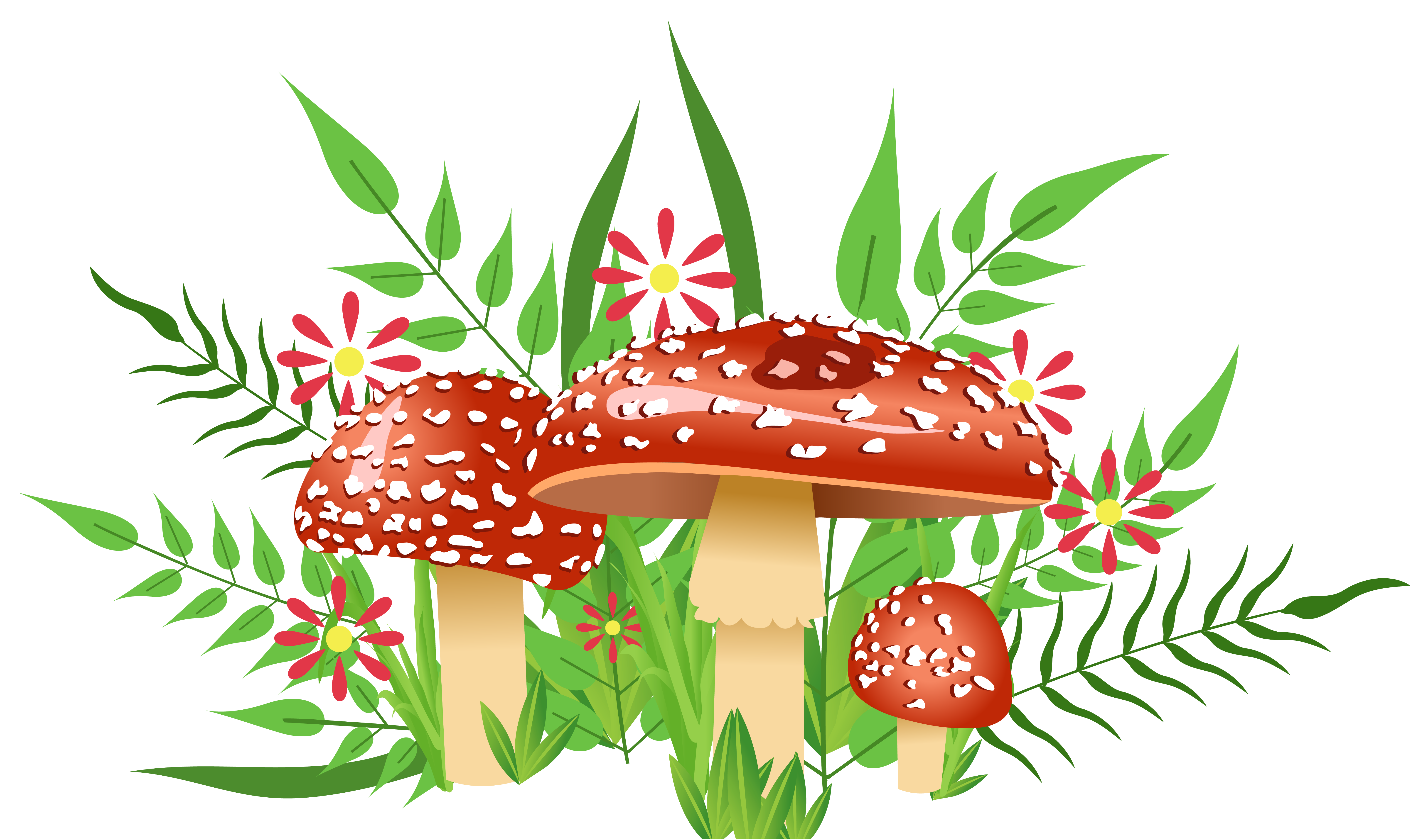 Clipart summer element. Mushrooms decorative png image