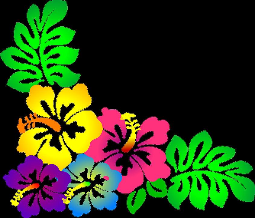 Resultado de imagem para. Clipart flower aesthetic