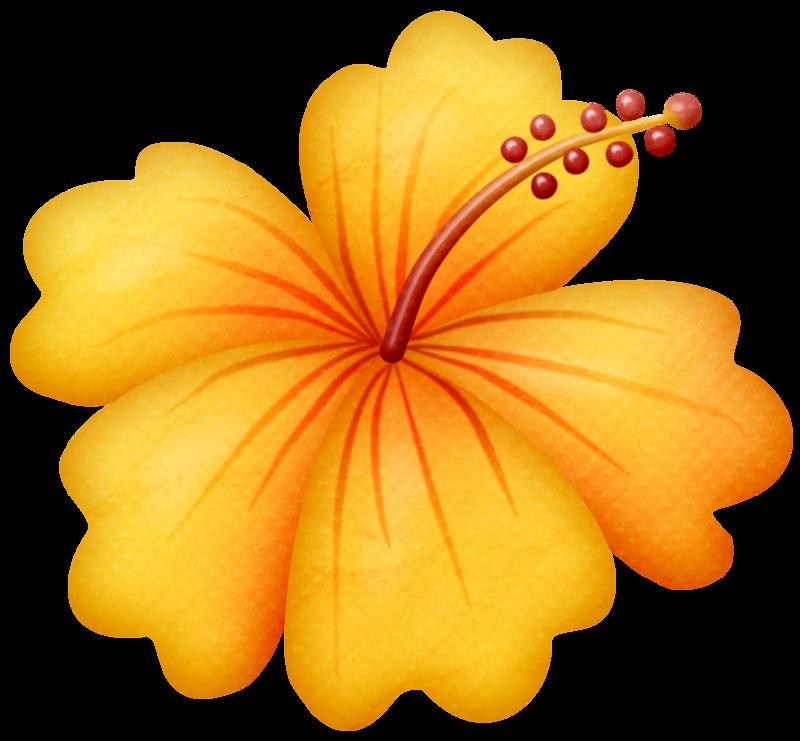 Lliella gumamela png dibujos. Flower clipart beach