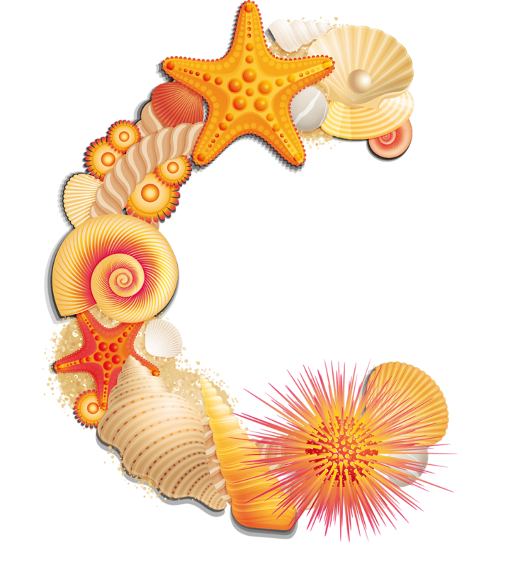 Shell clipart pastel. Beach letter c alphabetically