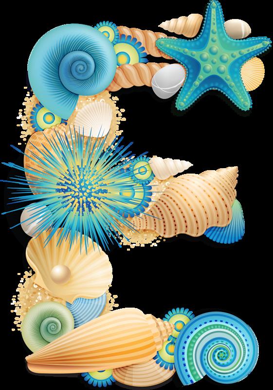 Letters seashell