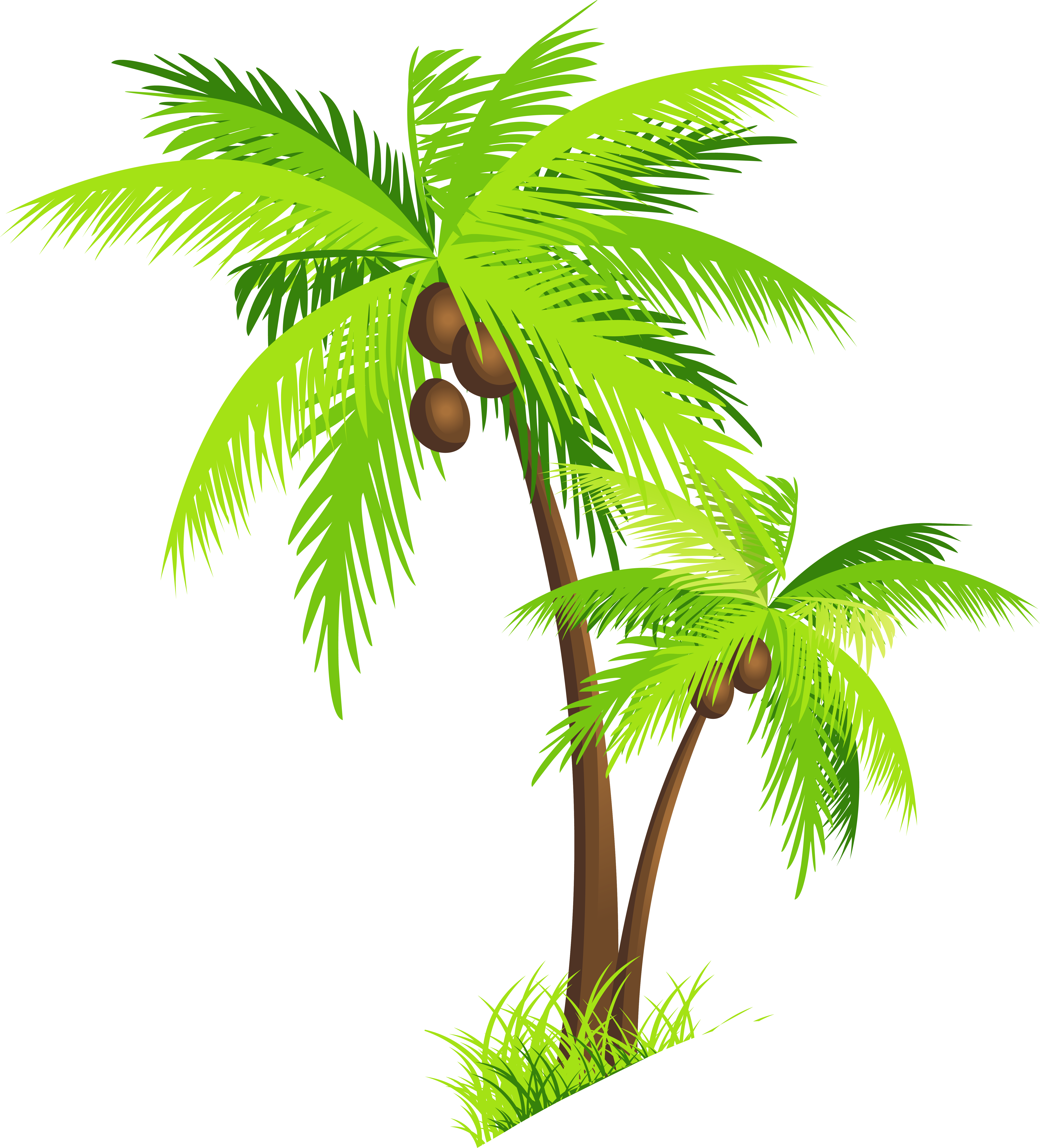 Palm clipart single. Tree beach panda free