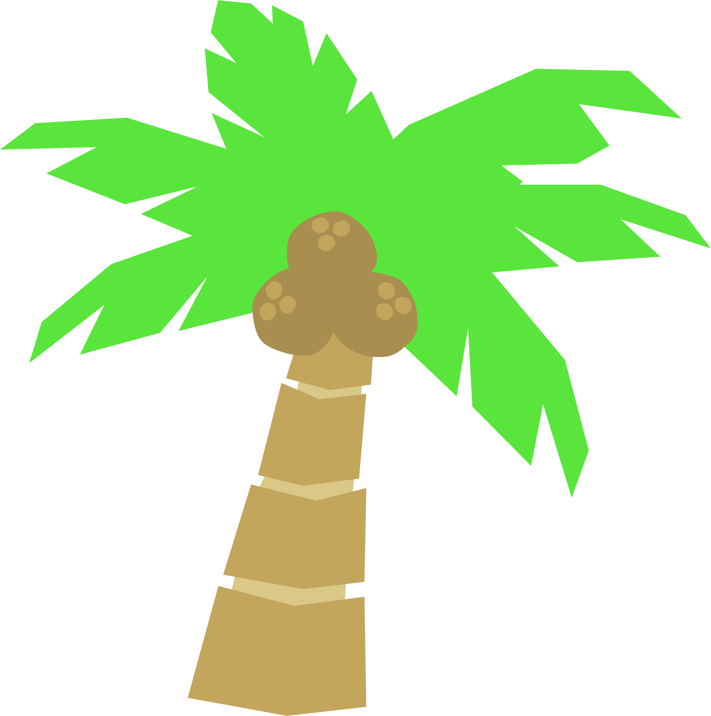 Palm big image png. Tree clipart beach