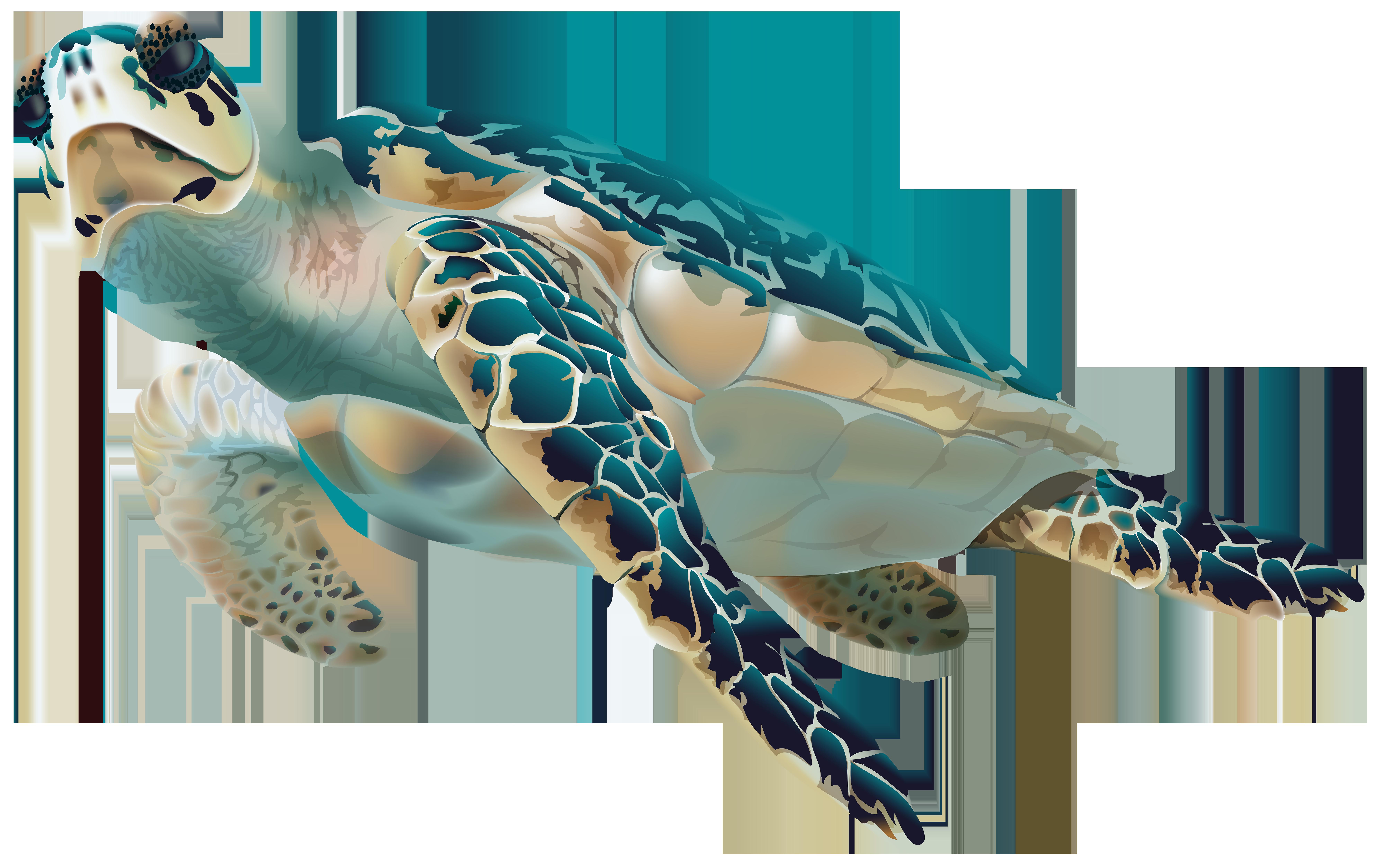 Fish clipart turtle. Sea png transparent clip