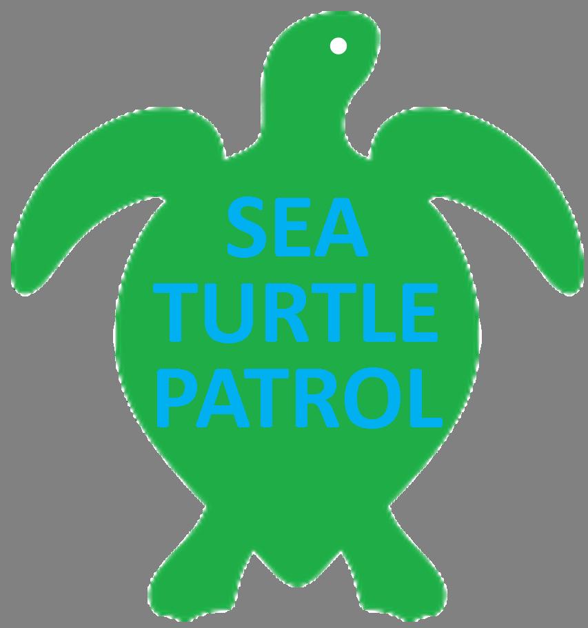 Clipart turtle beach. S o b a