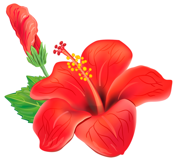 Clipart butterfly flower. Red exotic png picture