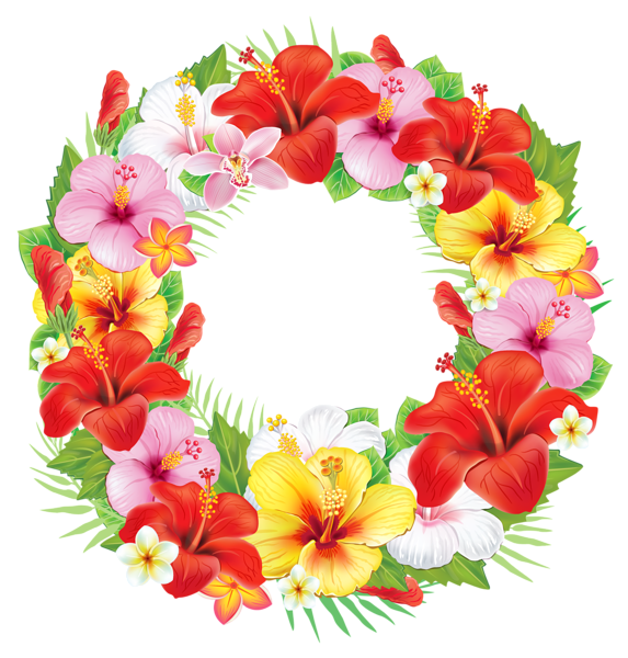 Hibiscus clipart printable.  png