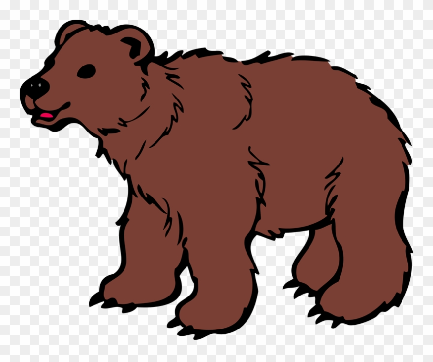 Png download . Clipart bear brown bear