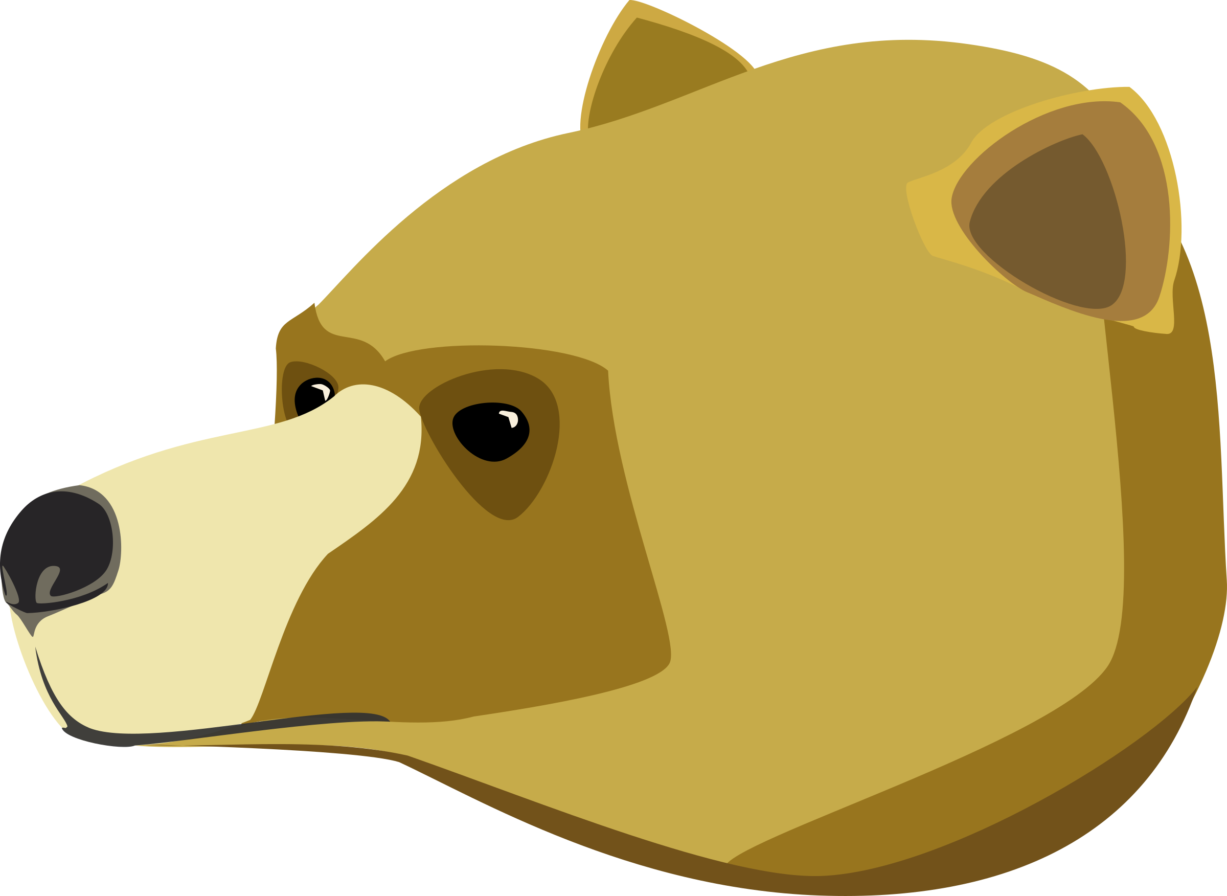 Big image png. Clipart bear carnivore