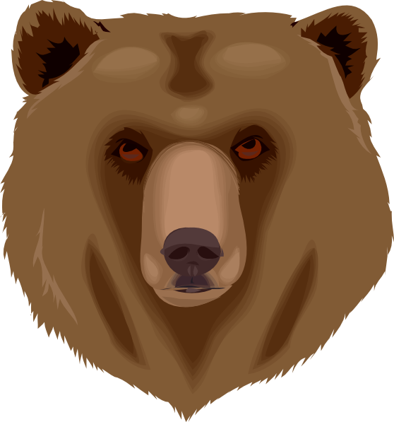 Head clipart brown bear. Tired pencil and in