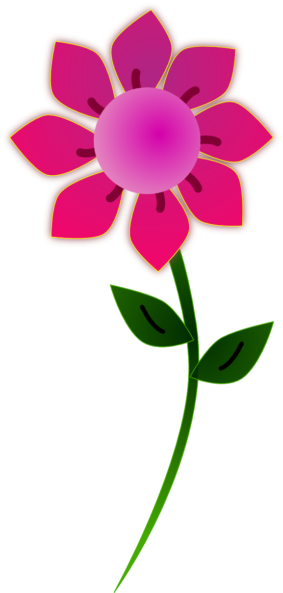 Flowers pink sun px. Flower clipart png