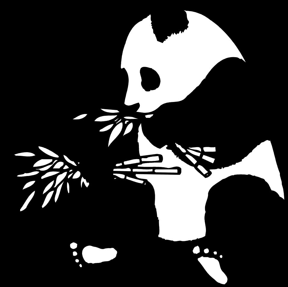 Clipart bear giant panda. Free stock photo illustration