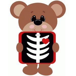 Clipart bear medical. Xray free svg invites