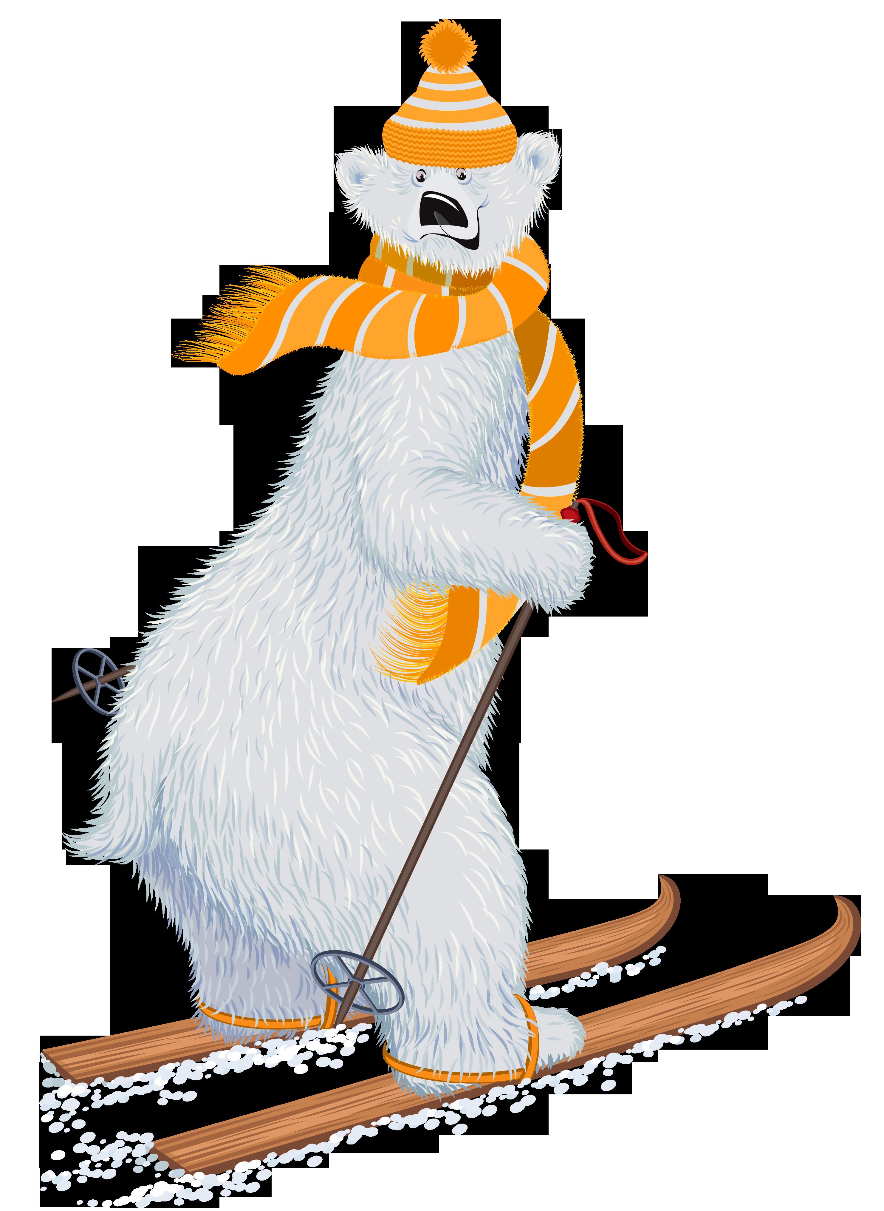 Polar transprent png free. Clipart bear skiing