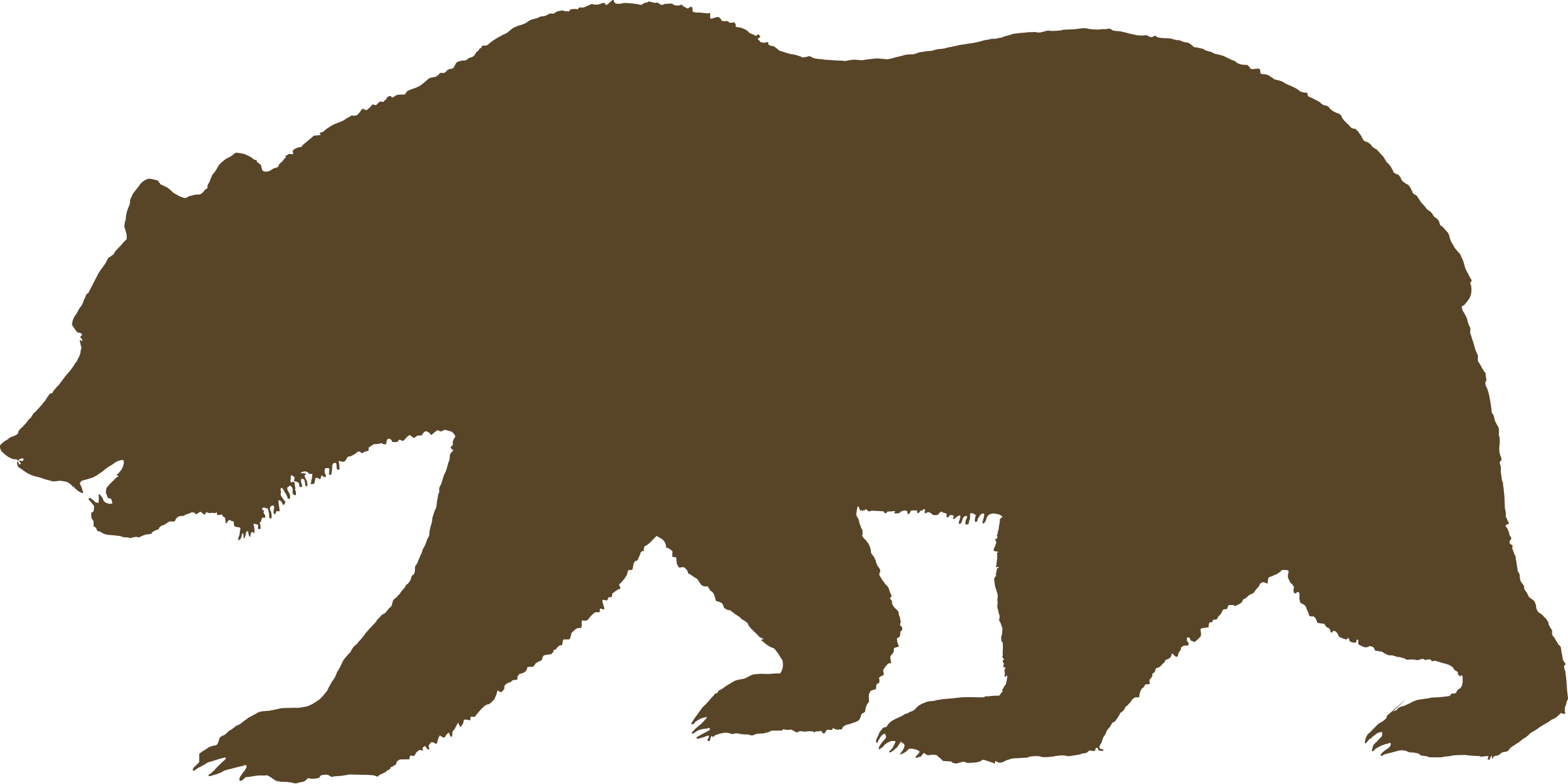 Big clipground california. Clipart bear standing