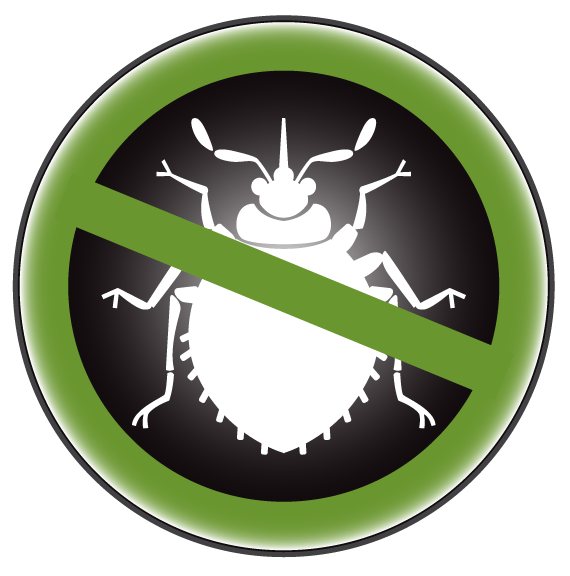 Bed bug docs bugs. Heat clipart thermal