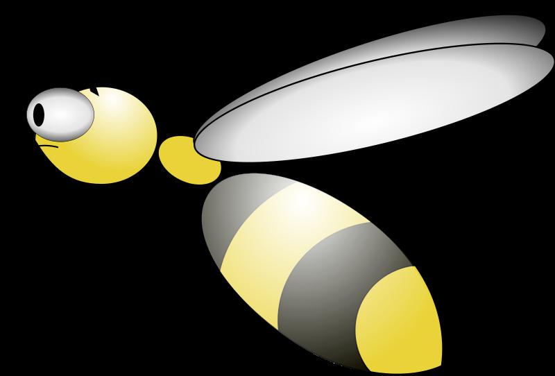 Bee animated