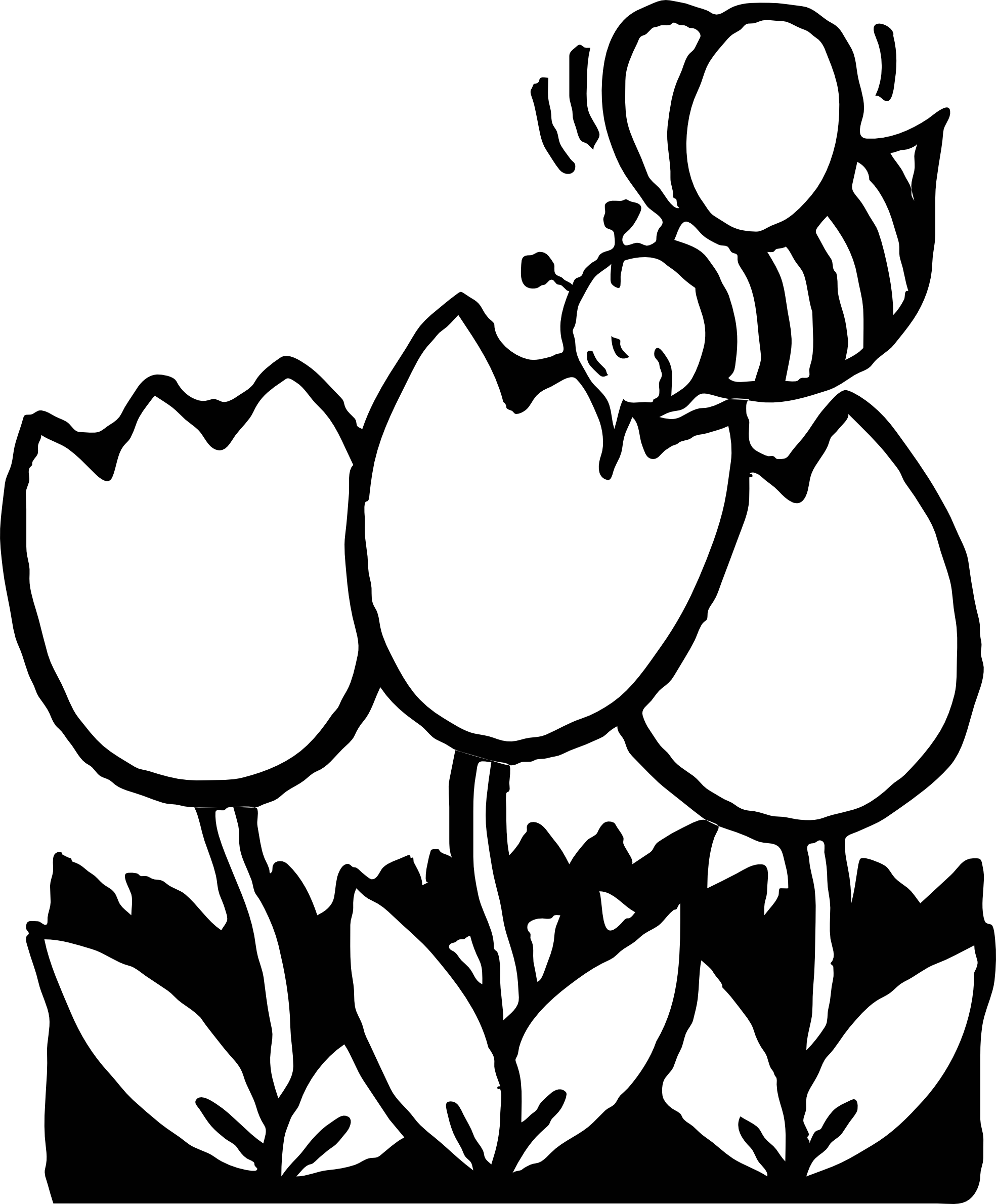 Clipart bee black and white. Line drawing at getdrawings